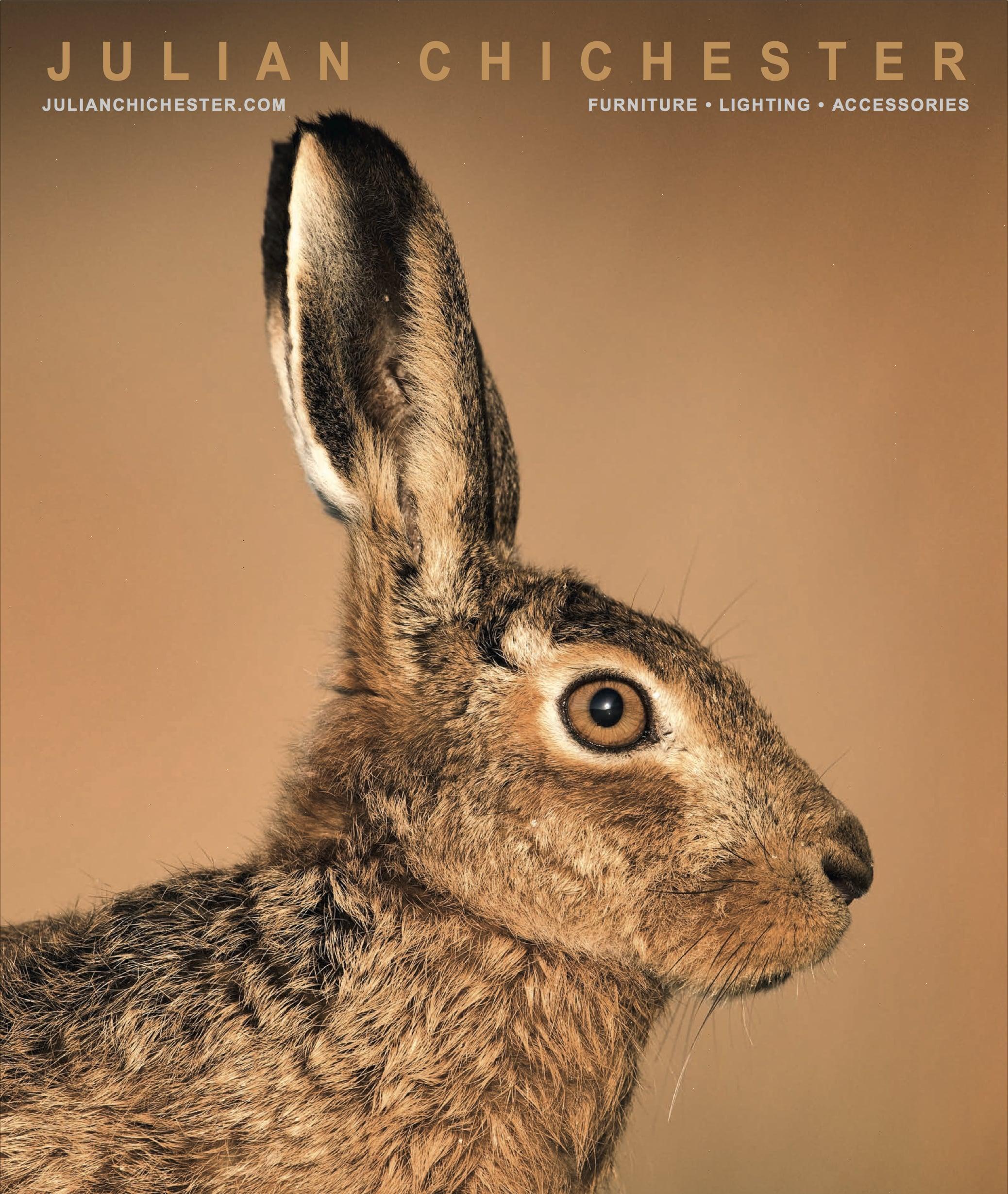 Hare 2016